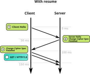 Abbreviated TLS handshake